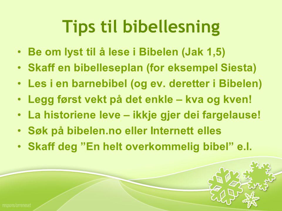 Tips til bibellesning Be om lyst til å lese i Bibelen (Jak 1,5) Skaff en bibelleseplan (for eksempel Siesta) Les i en barnebibel (og ev.