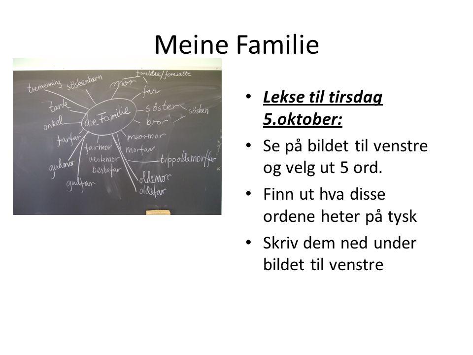 Meine Familie Lekse til tirsdag 5.oktober: Se på bildet til venstre og velg ut 5 ord. Finn ut hva disse ordene heter på tysk Skriv dem ned under bilde