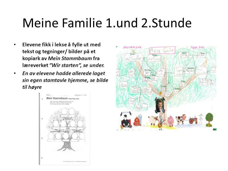 Meine Familie 1.und 2.Stunde Elevene fikk i lekse å fylle ut med tekst og tegninger/ bilder på et kopiark av Mein Stammbaum fra læreverket Wir starten