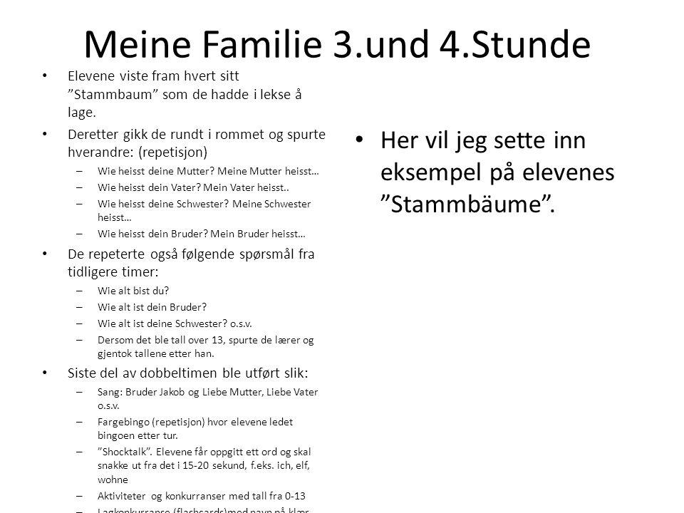 Meine Familie 3.und 4.Stunde Elevene viste fram hvert sitt Stammbaum som de hadde i lekse å lage. Deretter gikk de rundt i rommet og spurte hverandre: