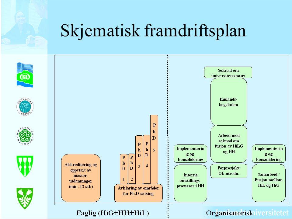 Skjematisk framdriftsplan