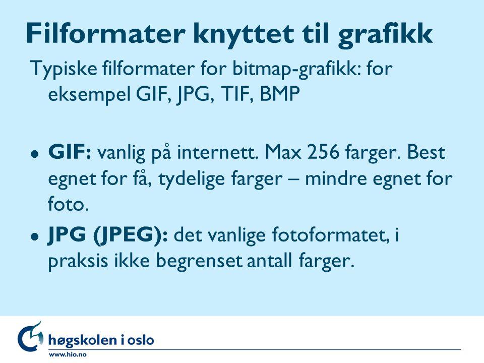 Filformater knyttet til grafikk Typiske filformater for bitmap-grafikk: for eksempel GIF, JPG, TIF, BMP l GIF: vanlig på internett.