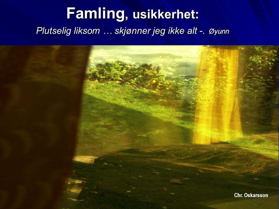 Famling, usikkerhet: Plutselig liksom … skjønner jeg ikke alt -. Øyunn Chr. Oskarsson