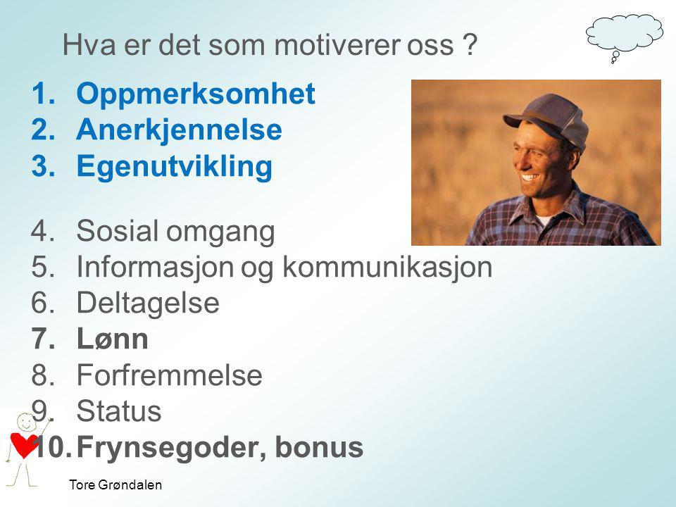 Tore Grøndalen Hva er det som motiverer oss ? 1.Oppmerksomhet 2.Anerkjennelse 3.Egenutvikling 4.Sosial omgang 5.Informasjon og kommunikasjon 6.Deltage