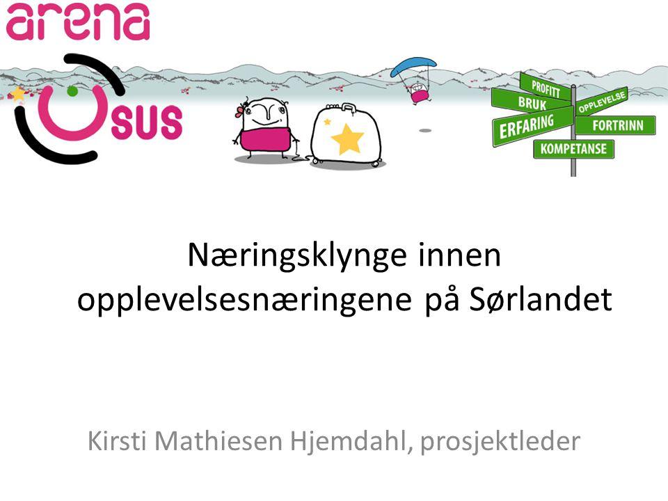 Næringsklynge innen opplevelsesnæringene på Sørlandet Kirsti Mathiesen Hjemdahl, prosjektleder
