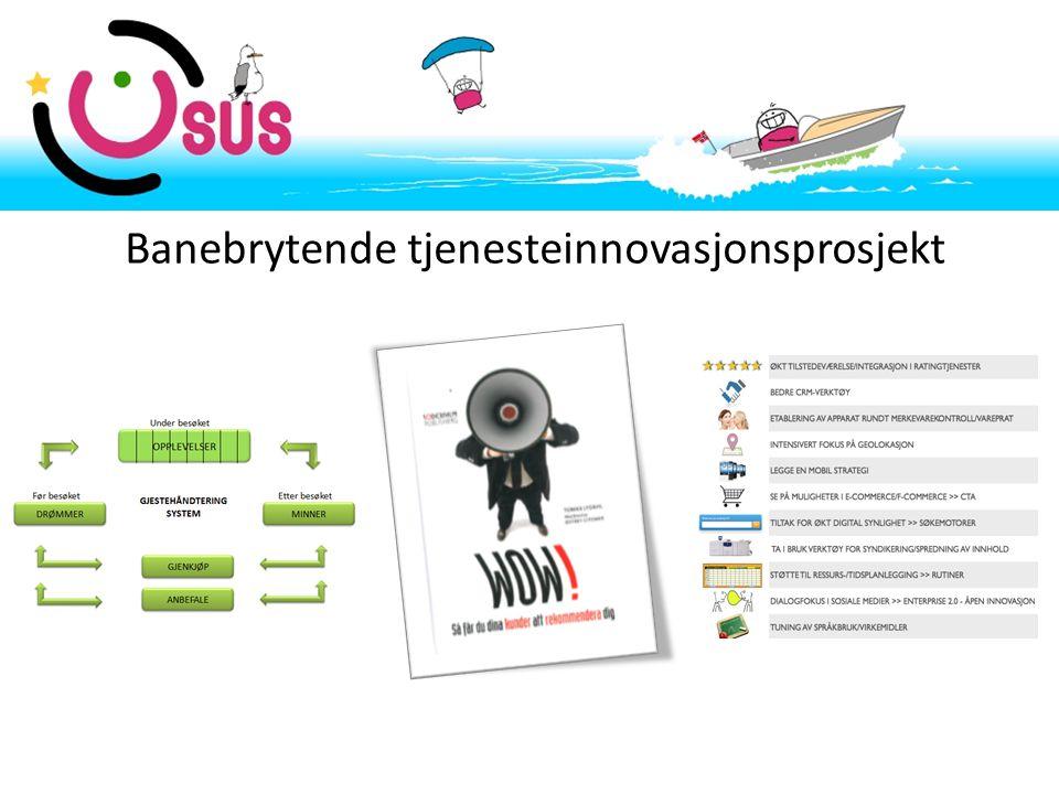 Banebrytende tjenesteinnovasjonsprosjekt