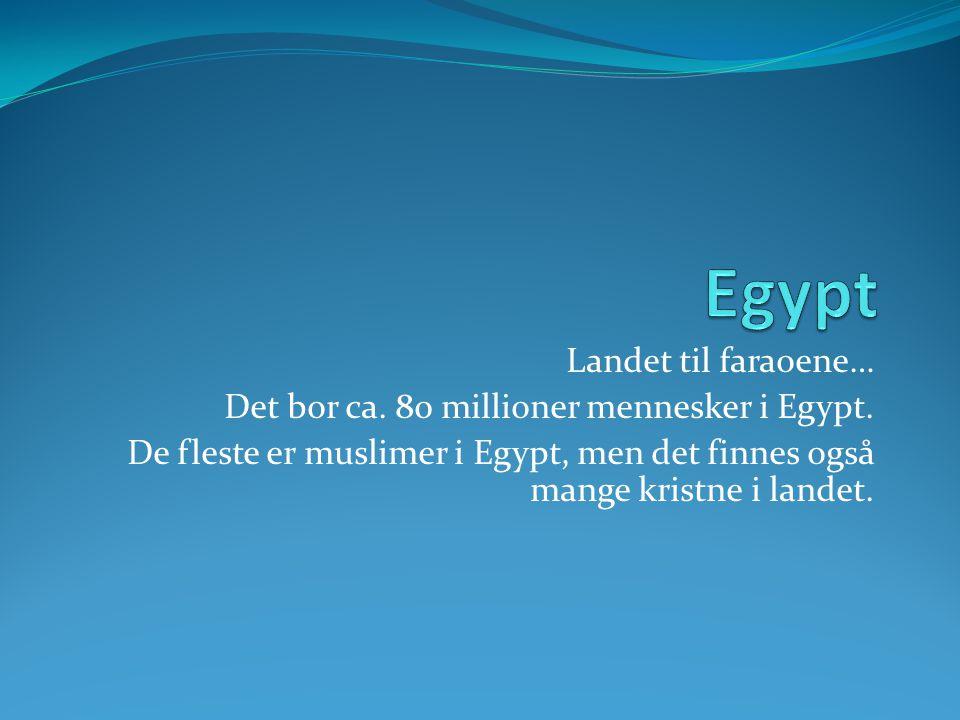 Landet til faraoene… Det bor ca. 80 millioner mennesker i Egypt. De fleste er muslimer i Egypt, men det finnes også mange kristne i landet.