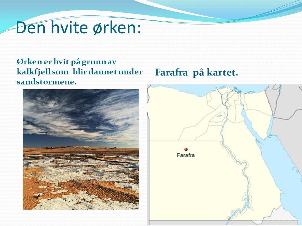 Den hvite ørken: Ørken er hvit på grunn av kalkfjell som blir dannet under sandstormene. Farafra på kartet.