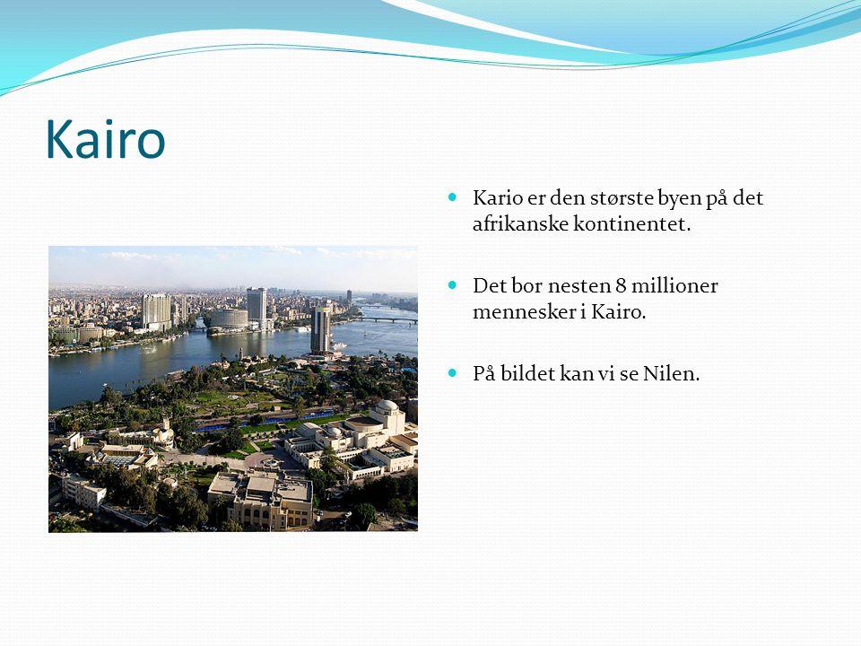 Kairo Kario er den største byen på det afrikanske kontinentet. Det bor nesten 8 millioner mennesker i Kairo. På bildet kan vi se Nilen.