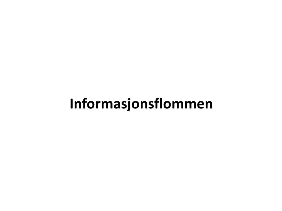 Informasjonsflommen