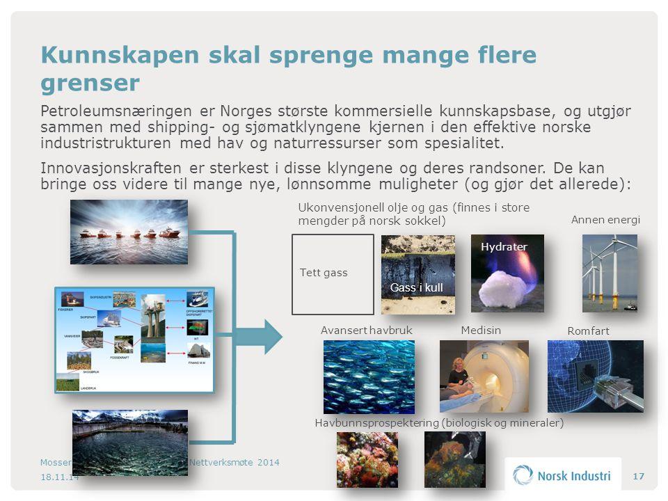 Petroleumsnæringen er Norges største kommersielle kunnskapsbase, og utgjør sammen med shipping- og sjømatklyngene kjernen i den effektive norske industristrukturen med hav og naturressurser som spesialitet.