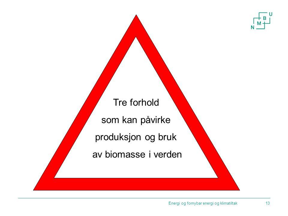 Energi og fornybar energi og klimatiltak Tre forhold som kan påvirke produksjon og bruk av biomasse i verden 13