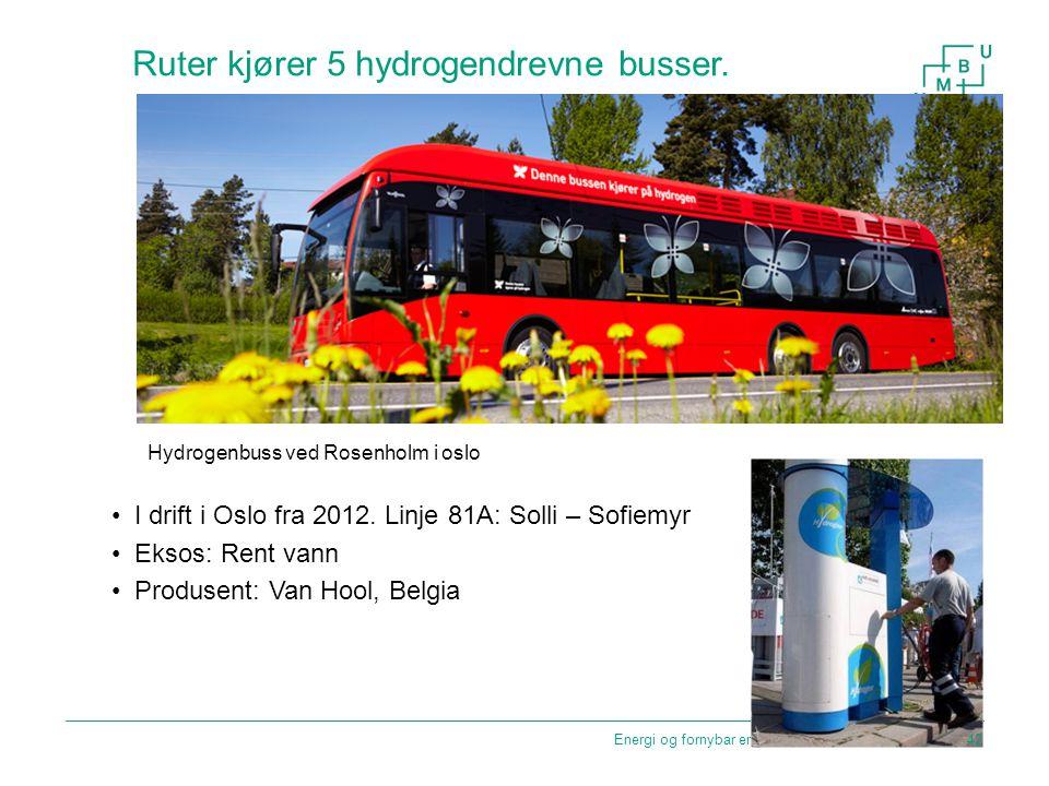Ruter kjører 5 hydrogendrevne busser. I drift i Oslo fra 2012. Linje 81A: Solli – Sofiemyr Eksos: Rent vann Produsent: Van Hool, Belgia Energi og forn