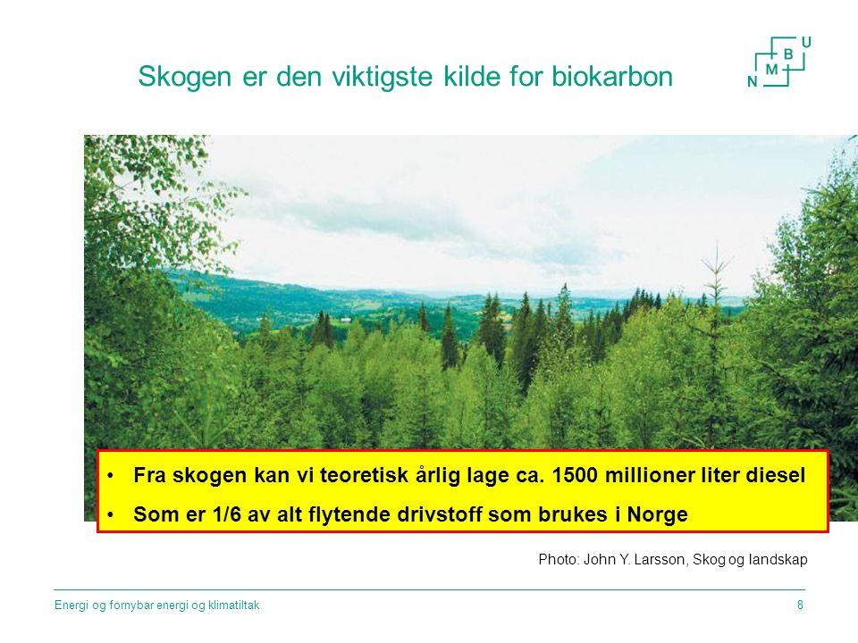 Skogen er den viktigste kilde for biokarbon Photo: John Y. Larsson, Skog og landskap Fra skogen kan vi teoretisk årlig lage ca. 1500 millioner liter d