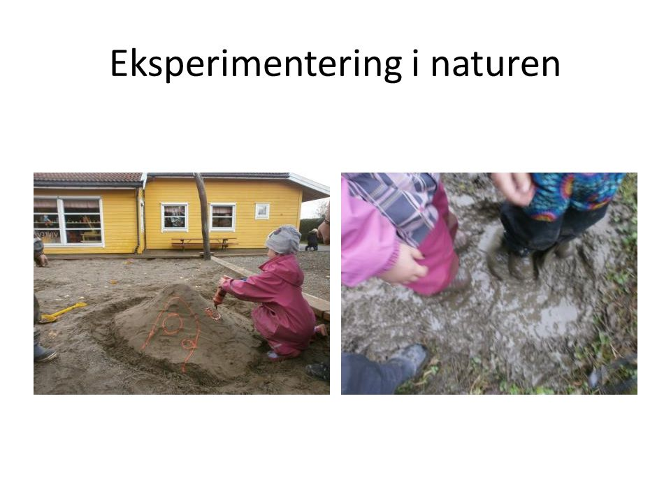 Eksperimentering i naturen