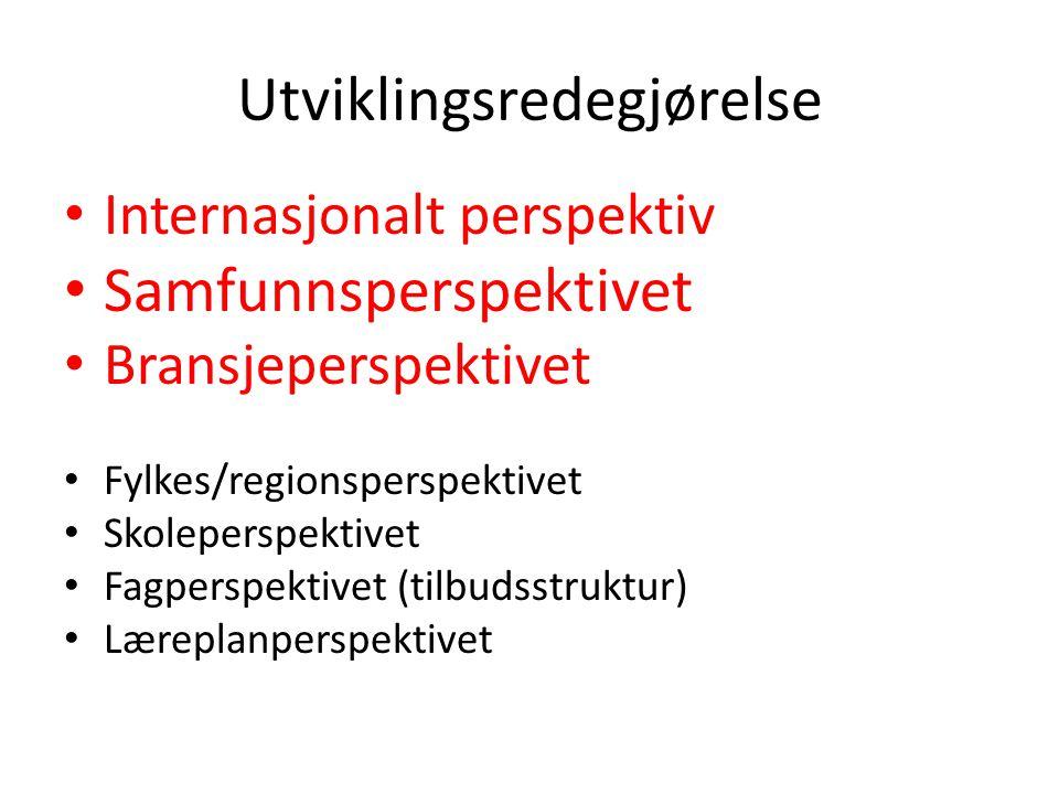 Utviklingsredegjørelse Internasjonalt perspektiv Samfunnsperspektivet Bransjeperspektivet Fylkes/regionsperspektivet Skoleperspektivet Fagperspektivet (tilbudsstruktur) Læreplanperspektivet