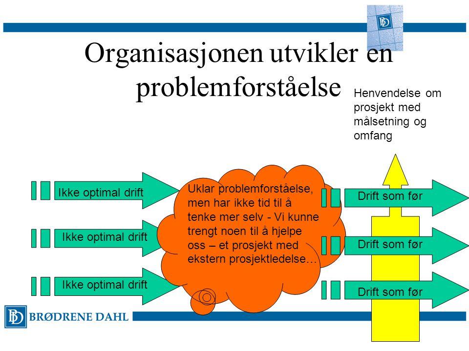 Organisasjonen utvikler en problemforståelse Ikke optimal drift Uklar problemforståelse, men har ikke tid til å tenke mer selv - Vi kunne trengt noen