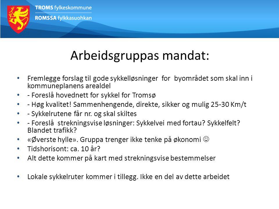 Arbeidsgruppas mandat: Også fremme visjoner om mulige fremtidige løsninger som: - Tromsøbrua: Stenges for biltrafikk.