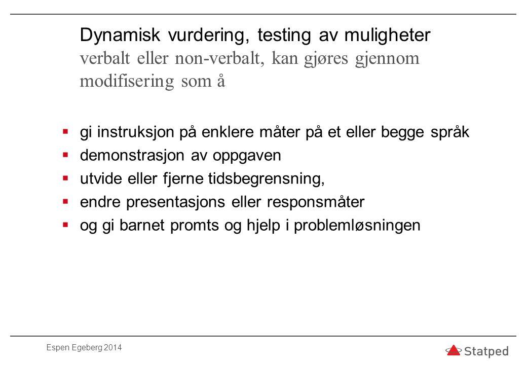 Prøv alltid ut resultater og hypoteser gjennom utredning som andre tester, pedagogiske prøver og observasjoner.