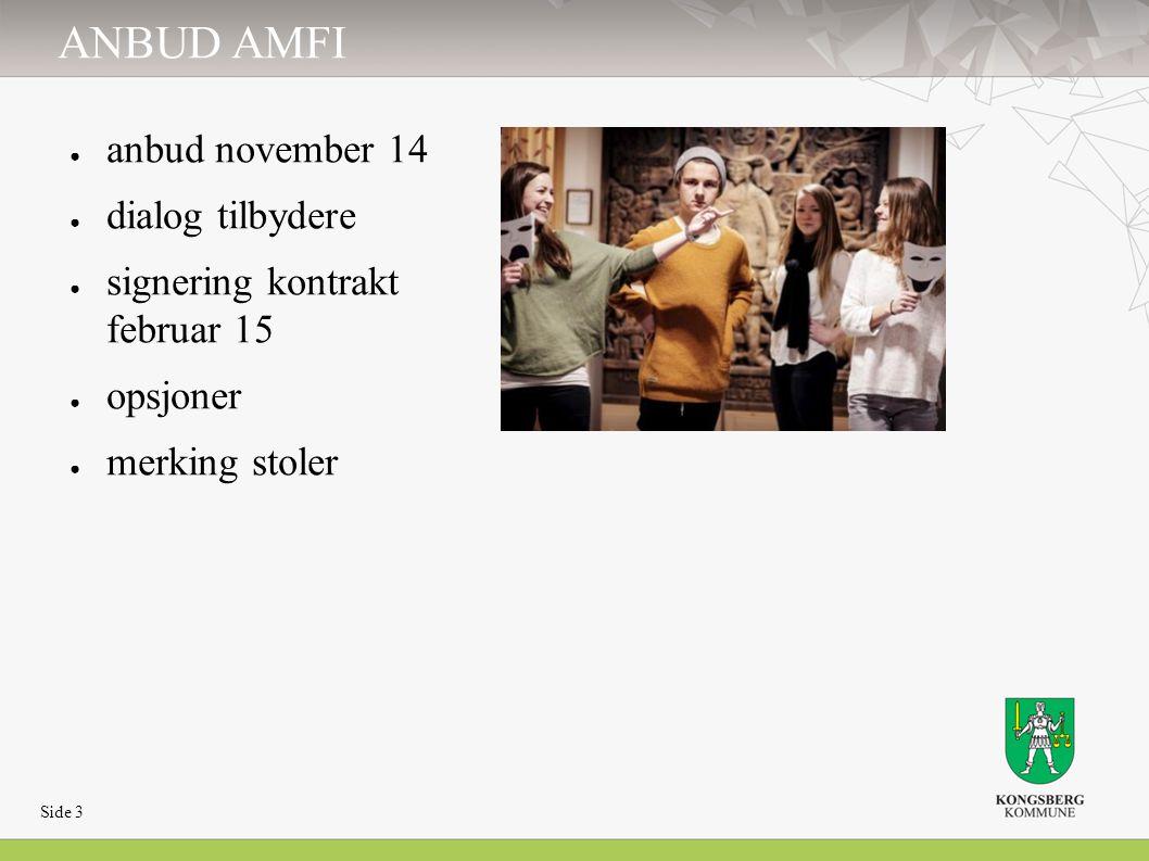 ANBUD AMFI ● anbud november 14 ● dialog tilbydere ● signering kontrakt februar 15 ● opsjoner ● merking stoler Side 3