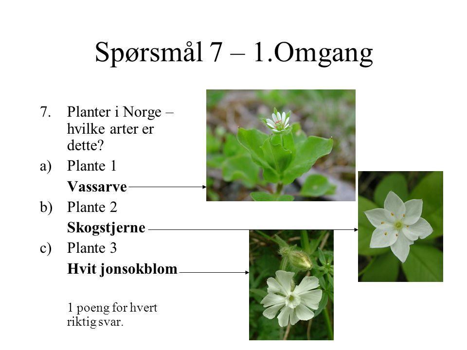 Spørsmål 7 – 1.Omgang 7.Planter i Norge – hvilke arter er dette.