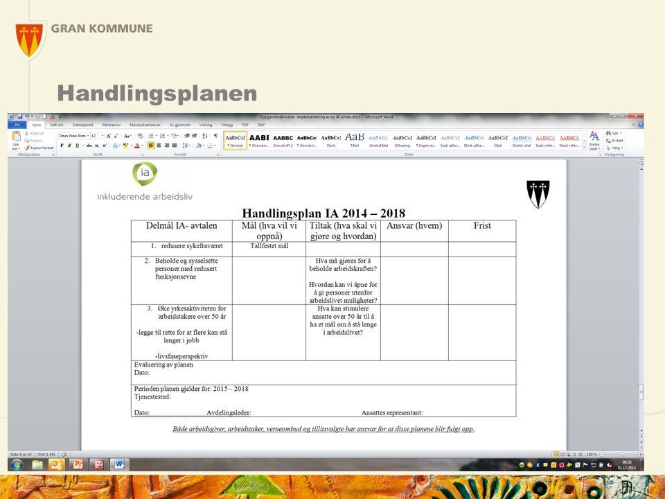 Handlingsplanen 13