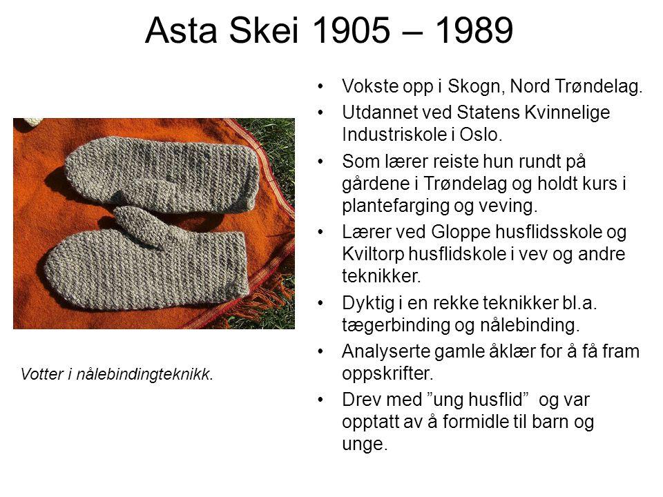 Asta Skei 1905 – 1989 Vokste opp i Skogn, Nord Trøndelag. Utdannet ved Statens Kvinnelige Industriskole i Oslo. Som lærer reiste hun rundt på gårdene