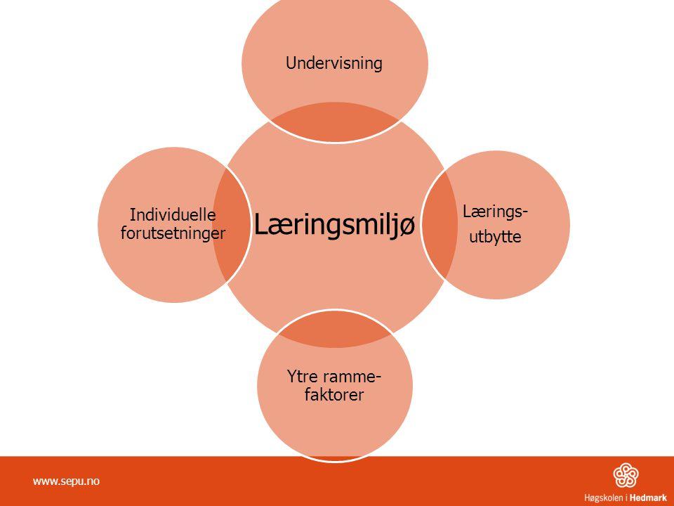 Analysemodellen Beskrive utfordring Formulering av målsetting Innhenting av informasjon Analyse av opprettholdende faktorer -------------------------------------------------------- Utvikling av strategier og tiltak Gjennomføring av valgte tiltak Evaluering www.sepu.no 1.