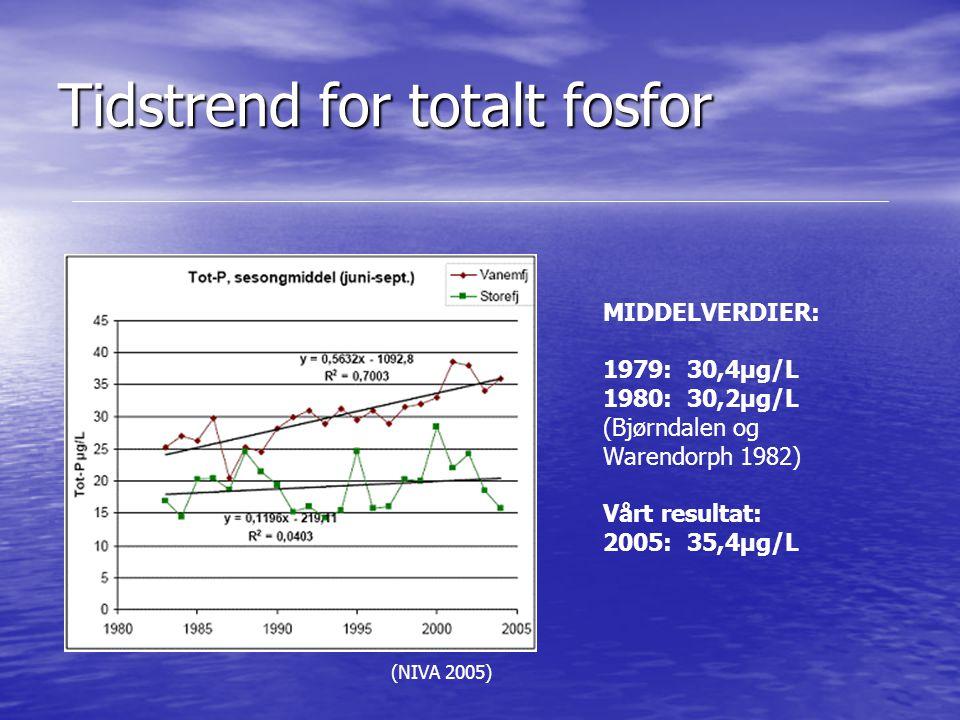 Tidstrend for totalt fosfor (NIVA 2005) MIDDELVERDIER: 1979: 30,4µg/L 1980: 30,2µg/L (Bjørndalen og Warendorph 1982) Vårt resultat: 2005: 35,4µg/L