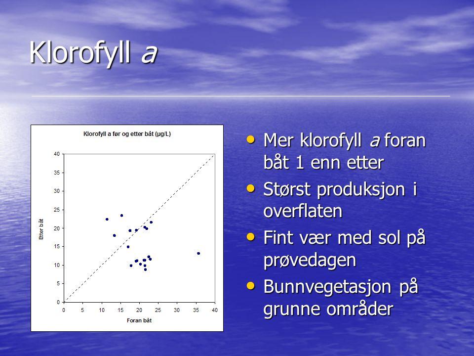 Klorofyll a Mer klorofyll a foran båt 1 enn etter Mer klorofyll a foran båt 1 enn etter Størst produksjon i overflaten Størst produksjon i overflaten
