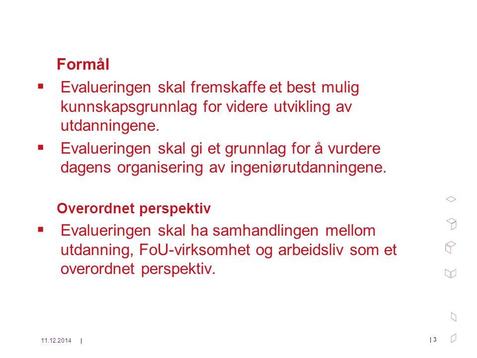 11.12.2014| | 3 Formål  Evalueringen skal fremskaffe et best mulig kunnskapsgrunnlag for videre utvikling av utdanningene.