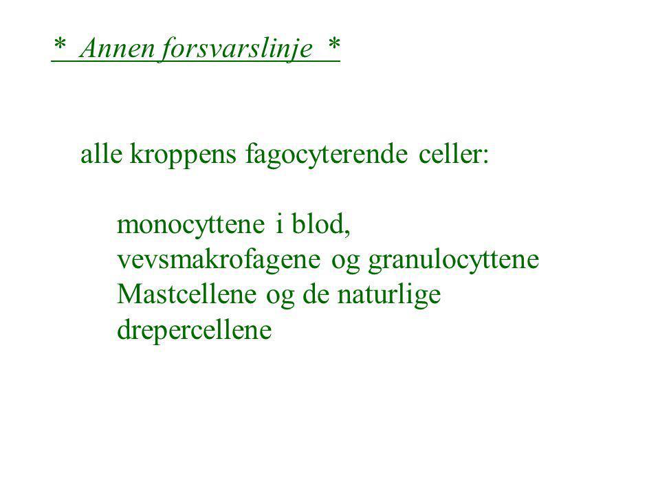 * Annen forsvarslinje * alle kroppens fagocyterende celler: monocyttene i blod, vevsmakrofagene og granulocyttene Mastcellene og de naturlige drepercellene