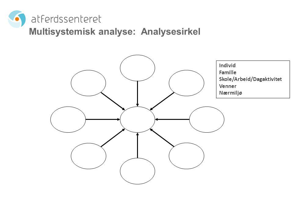 Multisystemisk analyse: Analysesirkel Individ Famille Skole/Arbeid/Dagaktivitet Venner Nærmiljø