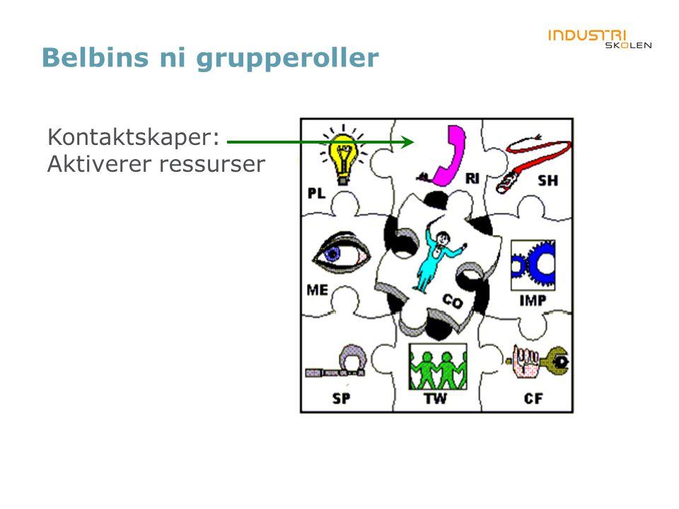 Belbins ni grupperoller Kontaktskaper: Aktiverer ressurser