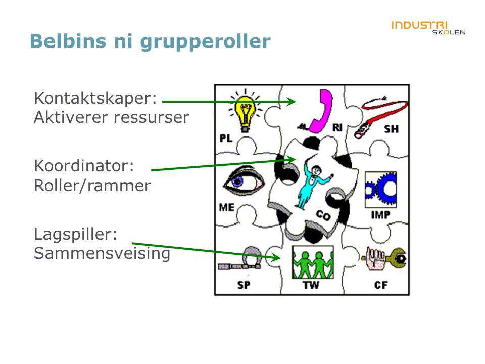 Belbins ni grupperoller Kontaktskaper: Aktiverer ressurser Koordinator: Roller/rammer Lagspiller: Sammensveising