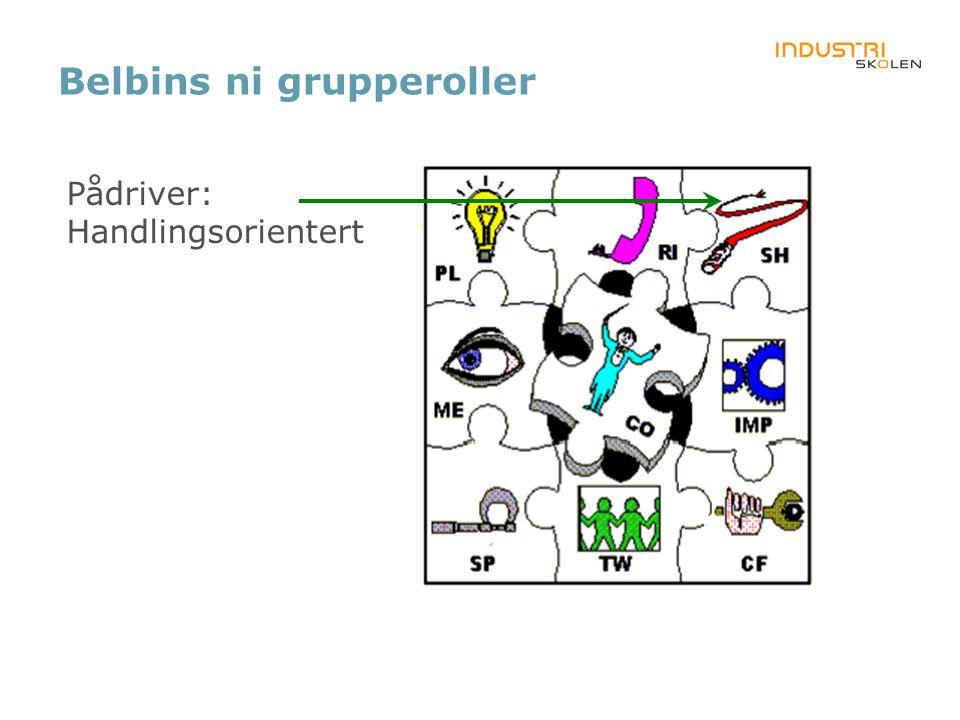 Belbins ni grupperoller Pådriver: Handlingsorientert