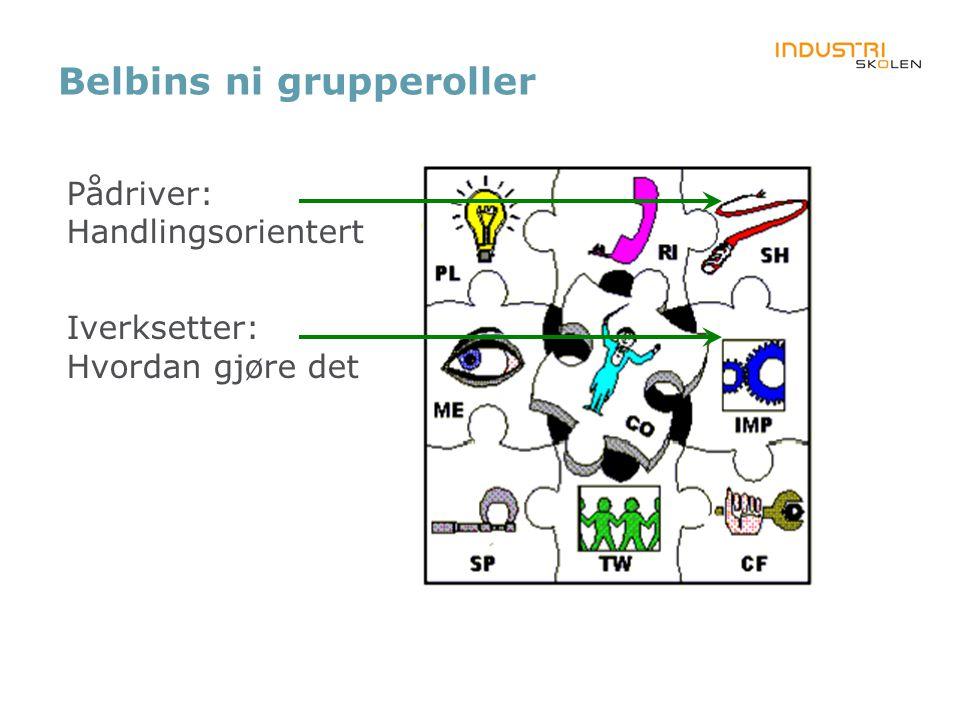 Belbins ni grupperoller Pådriver: Handlingsorientert Iverksetter: Hvordan gjøre det