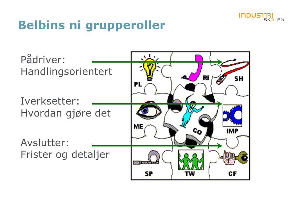 Belbins ni grupperoller Pådriver: Handlingsorientert Iverksetter: Hvordan gjøre det Avslutter: Frister og detaljer