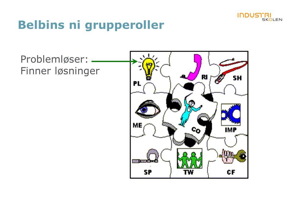 Belbins ni grupperoller Problemløser: Finner løsninger