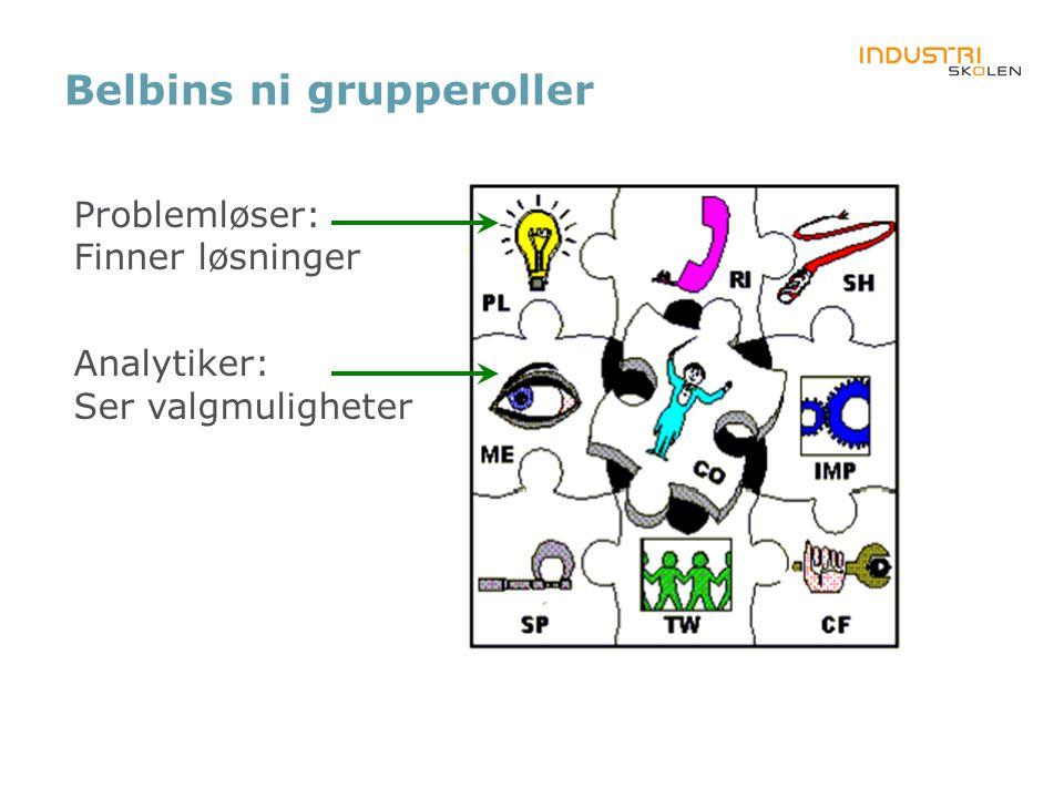 Belbins ni grupperoller Problemløser: Finner løsninger Analytiker: Ser valgmuligheter