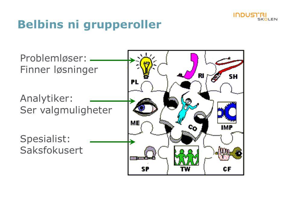Belbins ni grupperoller Problemløser: Finner løsninger Analytiker: Ser valgmuligheter Spesialist: Saksfokusert