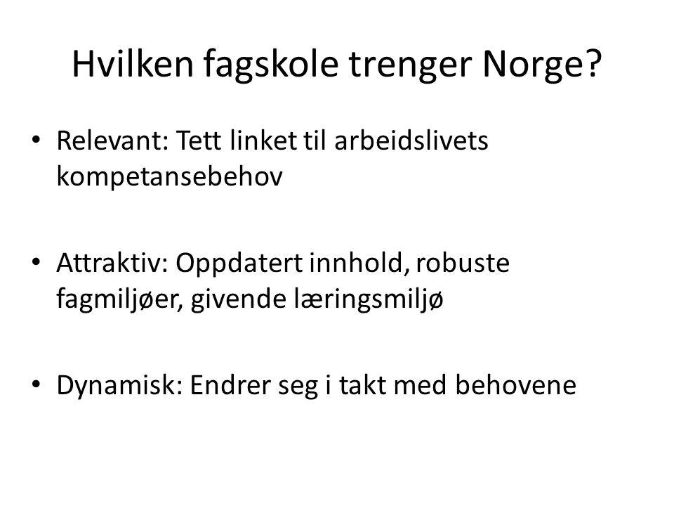 Hvilken fagskole trenger Norge.