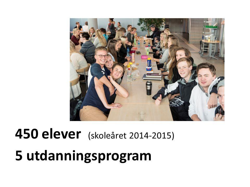 450 elever (skoleåret 2014-2015) 5 utdanningsprogram