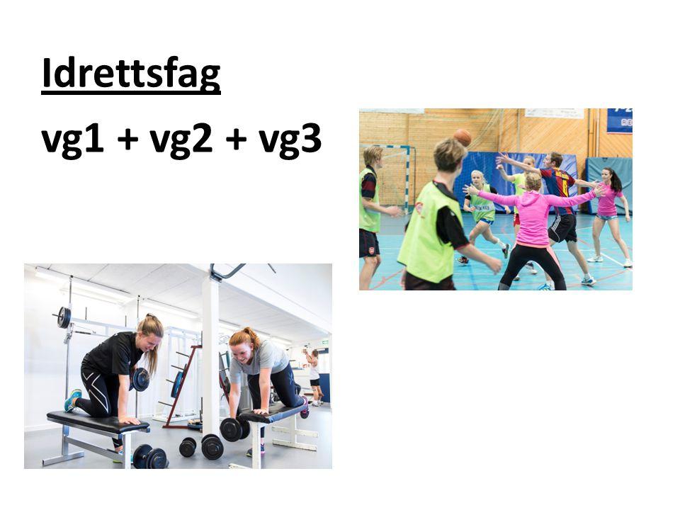 Studiespesialiserende utdanningsprogram Vg1 + vg2 + vg3