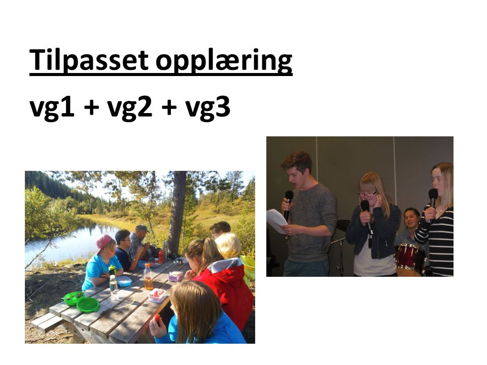 Tilpasset opplæring vg1 + vg2 + vg3