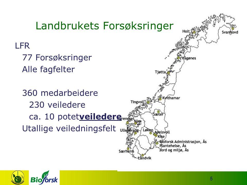5 LFR 77 Forsøksringer Alle fagfelter 360 medarbeidere 230 veiledere ca. 10 potetveiledere Utallige veiledningsfelt Landbrukets Forsøksringer