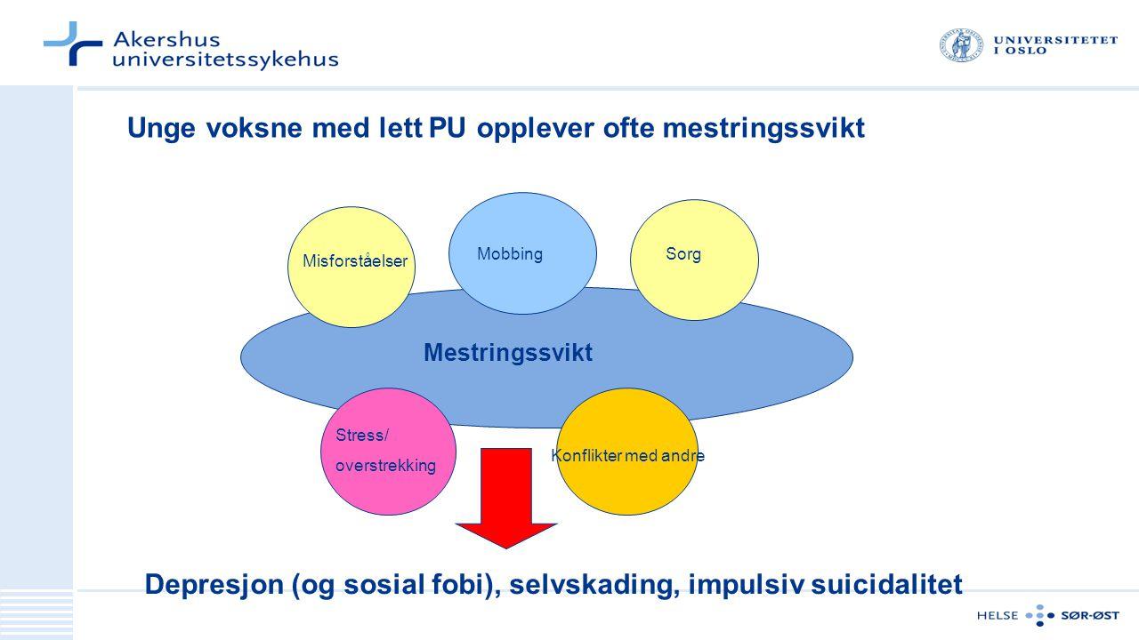 Misforståelser Mobbing Konflikter med andre Stress/ overstrekking Depresjon (og sosial fobi), selvskading, impulsiv suicidalitet Unge voksne med lett
