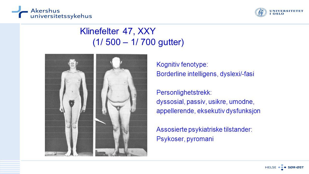 Klinefelter 47, XXY (1/ 500 – 1/ 700 gutter) Kognitiv fenotype: Borderline intelligens, dyslexi/-fasi Personlighetstrekk: dyssosial, passiv, usikre, umodne, appellerende, eksekutiv dysfunksjon Assosierte psykiatriske tilstander: Psykoser, pyromani