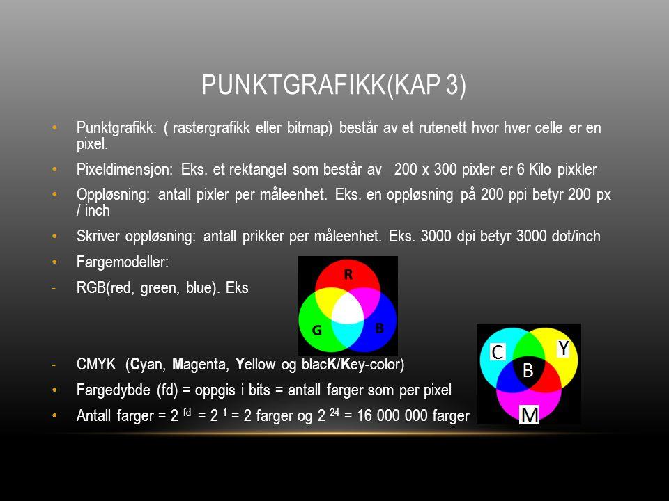 PUNKTGRAFIKK(KAP 3) Punktgrafikk: ( rastergrafikk eller bitmap) består av et rutenett hvor hver celle er en pixel.