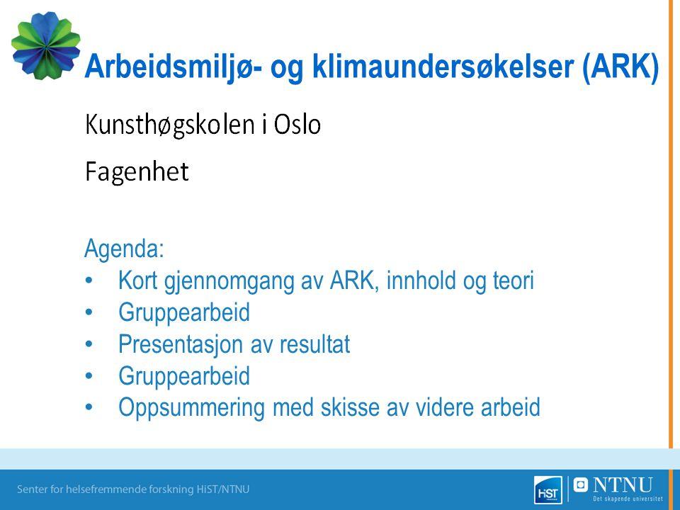 Agenda: Kort gjennomgang av ARK, innhold og teori Gruppearbeid Presentasjon av resultat Gruppearbeid Oppsummering med skisse av videre arbeid Arbeidsmiljø- og klimaundersøkelser (ARK)